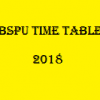VBSPU Time table 2018 download pdf