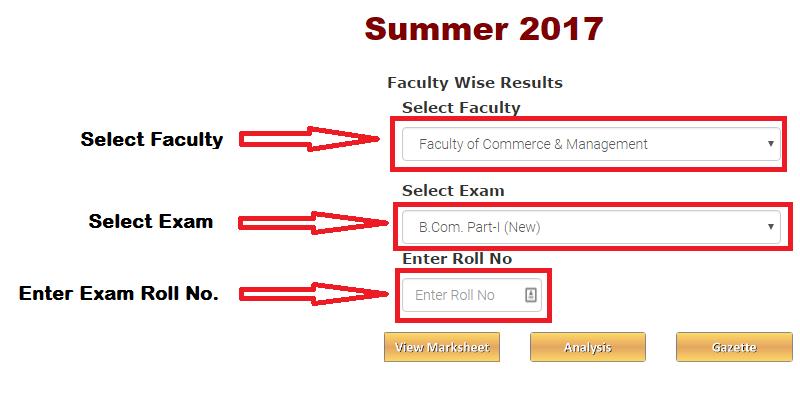 RTMNU Result summer 2017